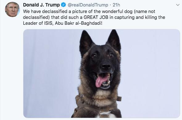 28/10/19 perro-héroe-isis-Trump/ perro