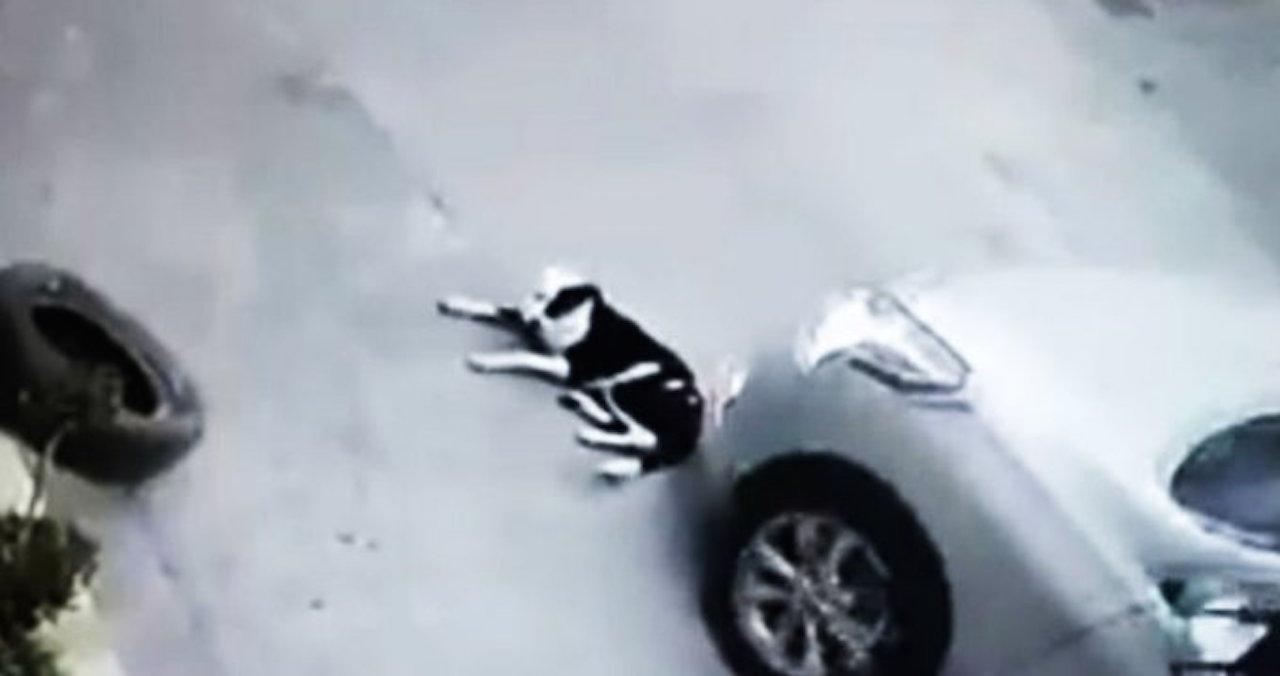 Conductor atropelló a una perrita y huyó en Nuevo León.