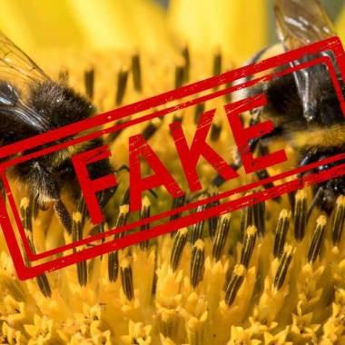 4/11/19 abejas-animal-mundo-importante/ fake