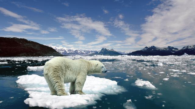 Científicos: para 2030 podría no haber hielo en el Ártico