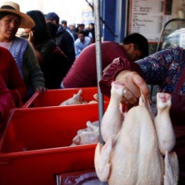 Bolivianos hacen fila para obtener alimentos y combustible