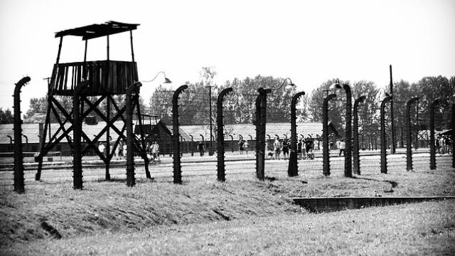 Auschwitz Campo Concentracion