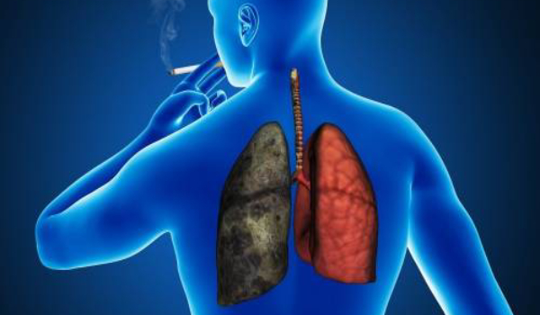 Dejar de fumar despierta células que regeneran los pulmones