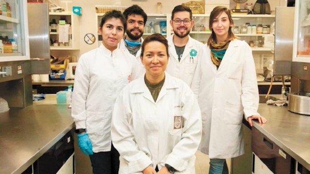 Investigadores del IPN eliminaron el Virus del Papiloma Humano en 29 mujeres (Imagen: El Universal)