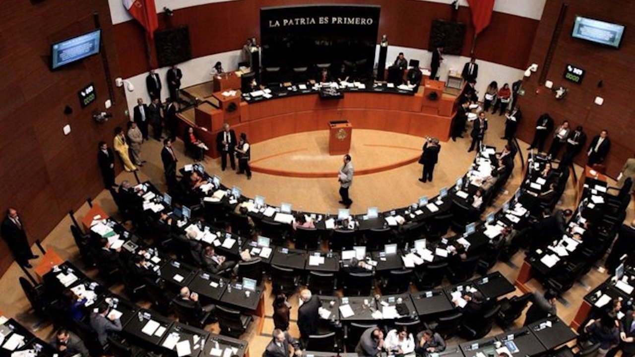 El Senado aprobó nuevas órdenes de protección para las mujeres violentadas (Imagen: MVS)