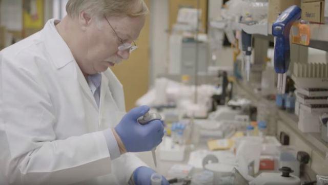Coronavirus no fue creado en un laboratorio, señalan científicos