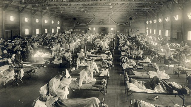 Gripe Española, Nazi, Pandemia, 1918