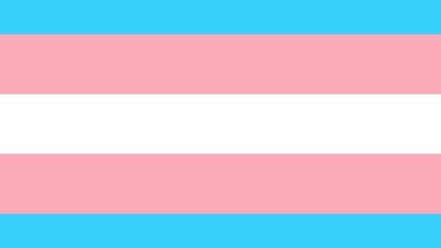 Personas Trans, Procesos Electorales, CDMX, Transfobia