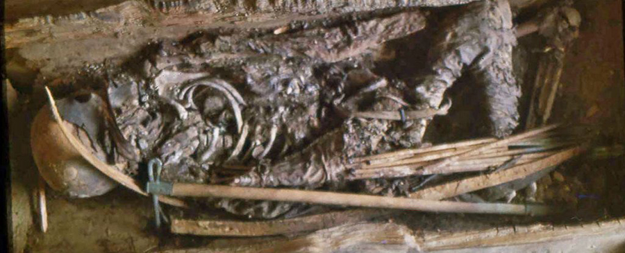 Restos de guerra escita que es una amazona de la antigua Grecia, reveló estudio de ADN