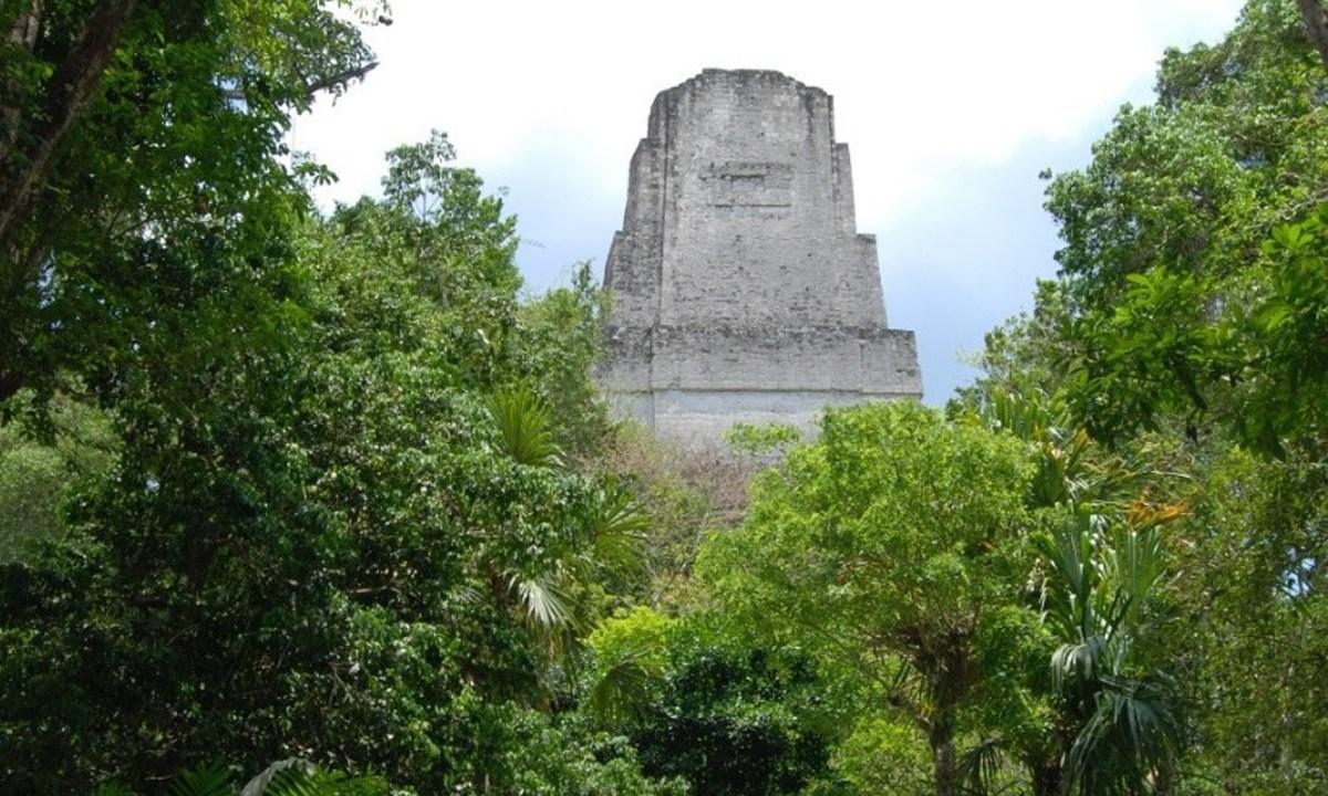 El agua de Tikal estaba contaminada al punto de ser imbebible, por lo que la antigua ciudad maya, Tikal, pudo ser abandonada