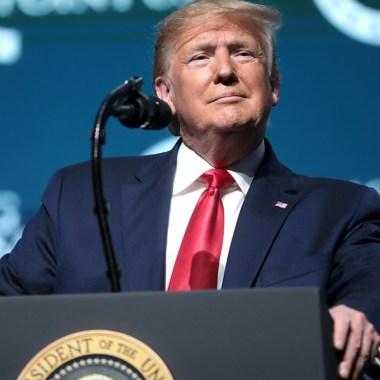 El presidente de Estados Unidos Donald Trump anunció en Twitter quiere posponer la elecciones de Estados Unidos