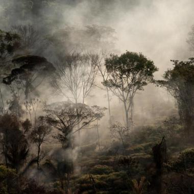 Se disparan nuevamente los incendios en el Amazonas