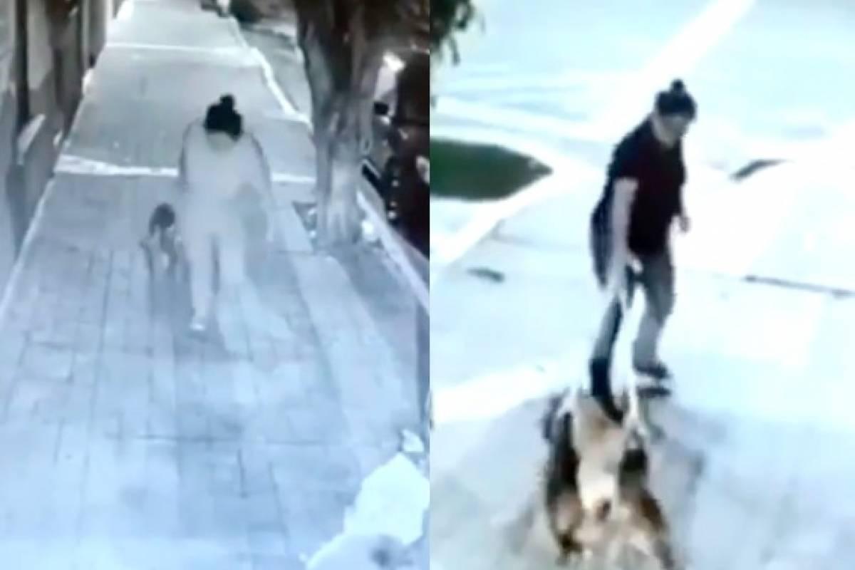 Mujer abandona tres perros en veterinaria (Foto: Publimetro)