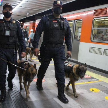 Activistas cannábicos rechazan persecución con perros en el Metro