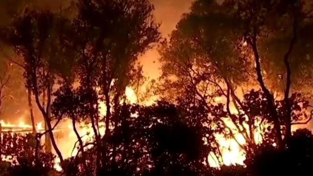 Los fuegos artificiales en una fiesta de revelación de género provocó un incendio forestal en el sur de California, Captura de Pantalla