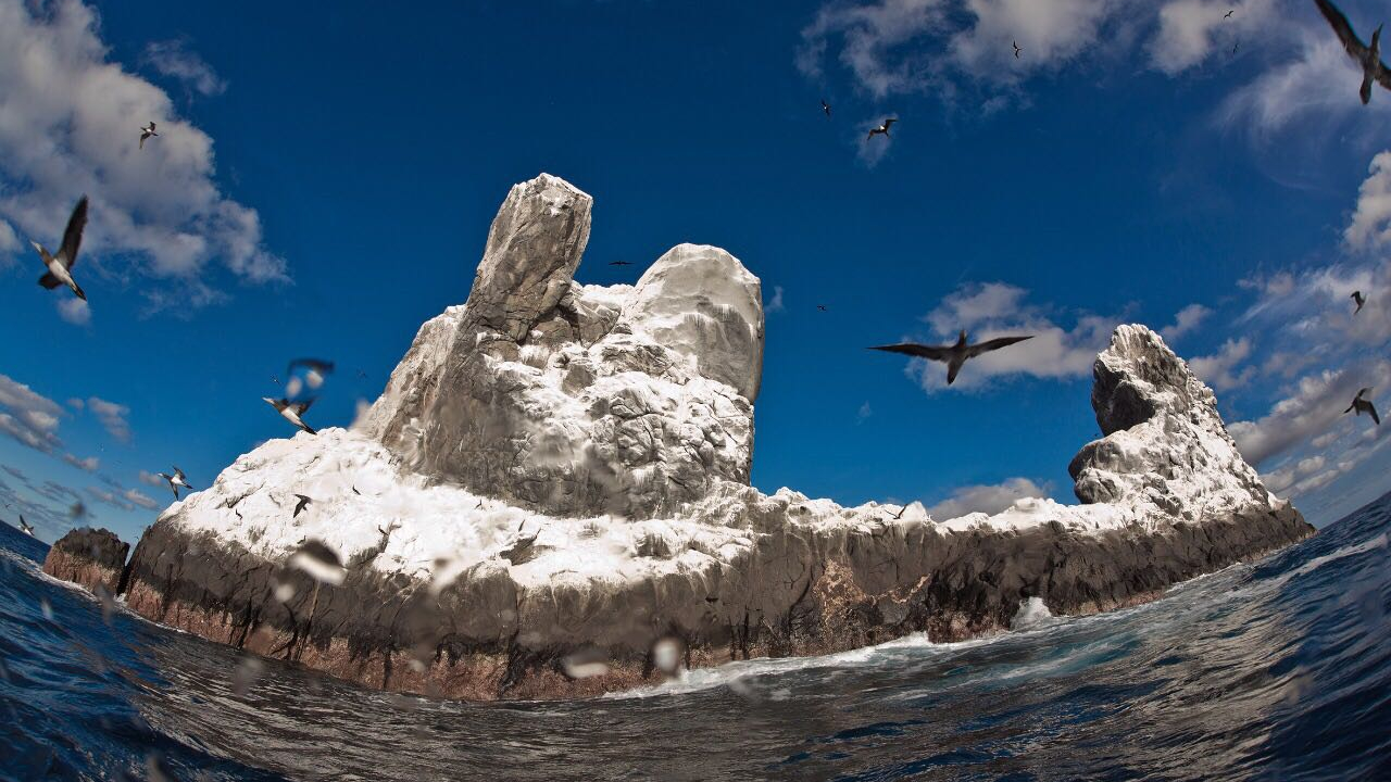 Parque Nacional Revillagigedo riesgo pesca ilegal
