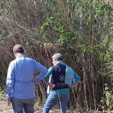 encuentran 59 cuerpos fosas clandestinas Salvatierra Guanajuato