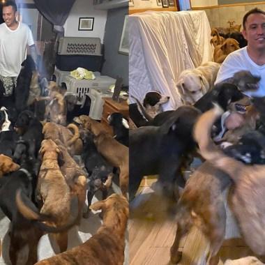 Ricardo Pimentel Cordero resguarda a 300 perros callejeros en su casa para protegerlos de los estragos del huracán Delta