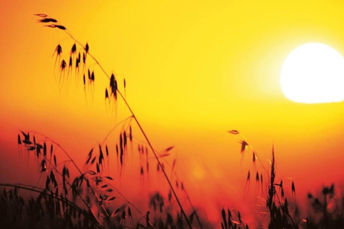 Un estudio hecho recientemente sobre el cambio climático en Asia oriental reveló que el efecto es irreversible,