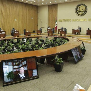 INE partidos incluir candidaturas indígenas afromexicanas personas con discapacidad LGBT