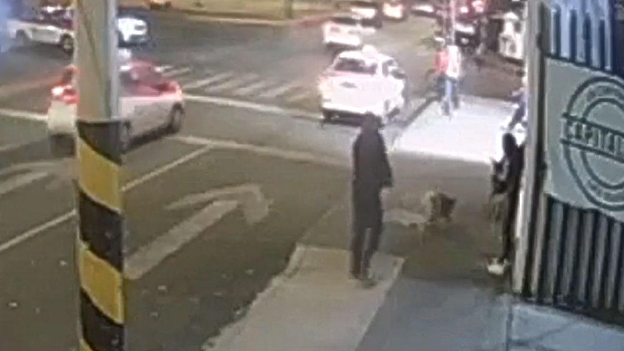 Un video muestra el momento en el que un hombre mató a una perrita a balazos en la alcaldía Azcapotzalco, Ciudad de México (CDMX)