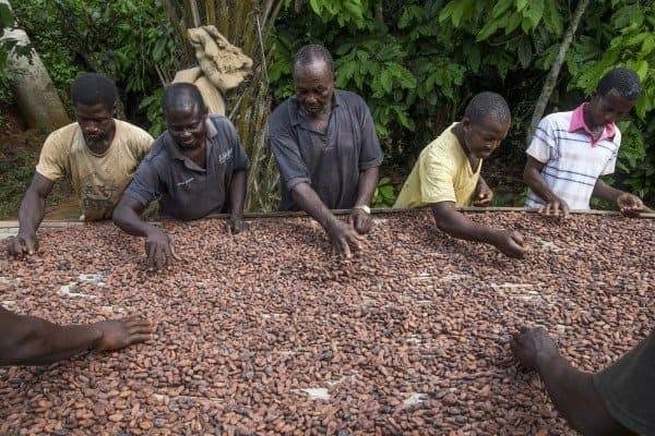 chocolate esclavitud infantil