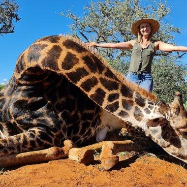 Mujer caza a jirafa en Sudáfrica y posa con el corazón del animal para redes sociales