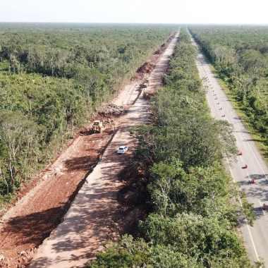 Jueza concede suspensión definitiva de Tren Maya en 3 municipios de Yucatán