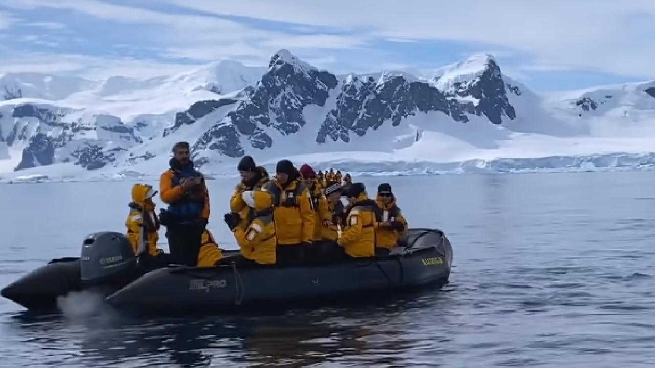 Unpingüino se salvó de ser comido por una orca