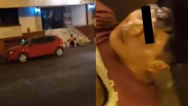 video hombre golpea mujer Veracruz