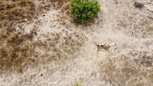 Cientificos UNAM dejar llover CDMX