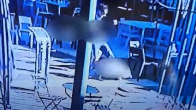 Hombre mató perro patada salvar a su hijo