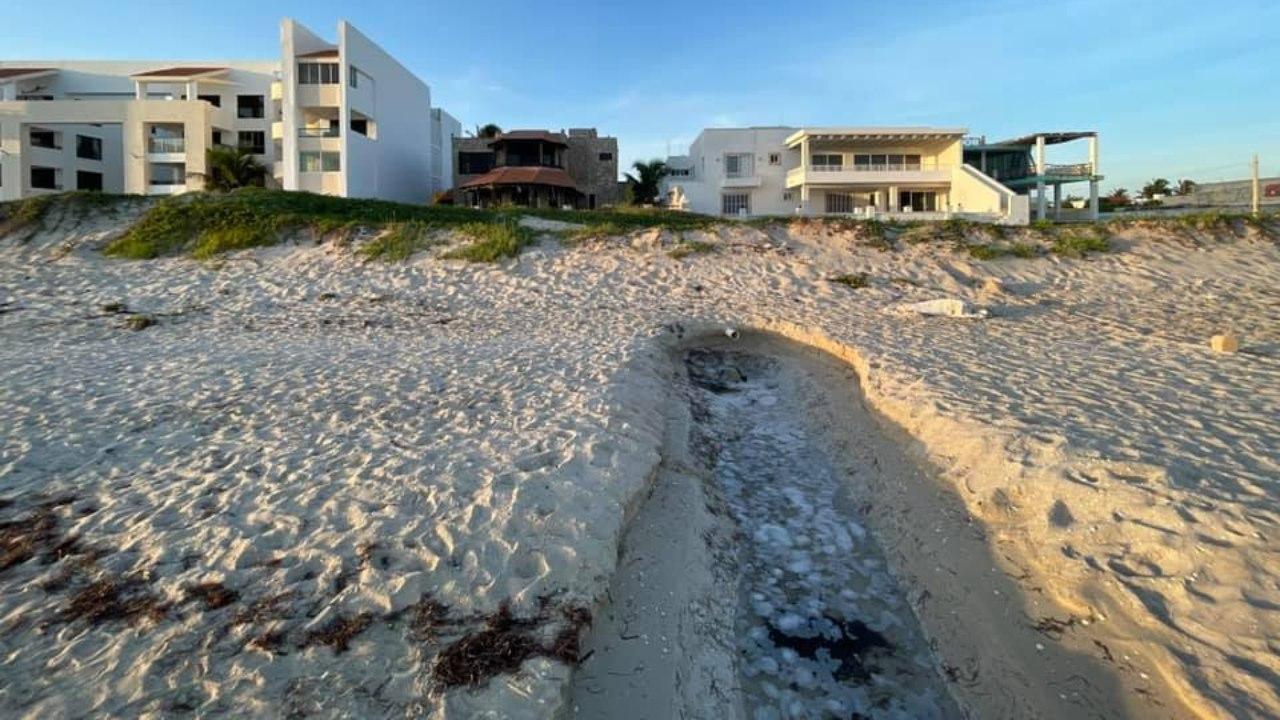 Denuncian propiedad con desagüe conectado al mar