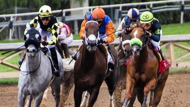 Drogan a caballo para ganar carrera; llega primero y cae muerto