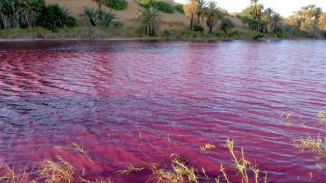 estanque se tiñe de rojo en Jordania