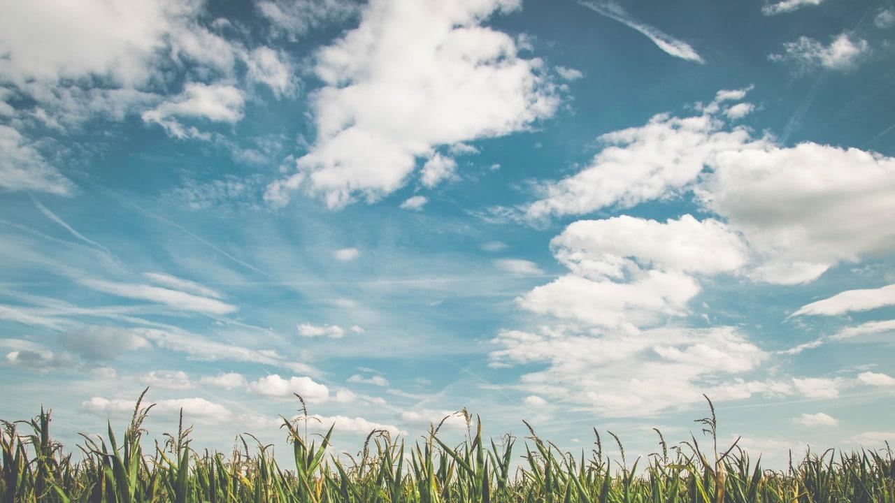 aprende a leer cada tipo de nube y lo que provoca