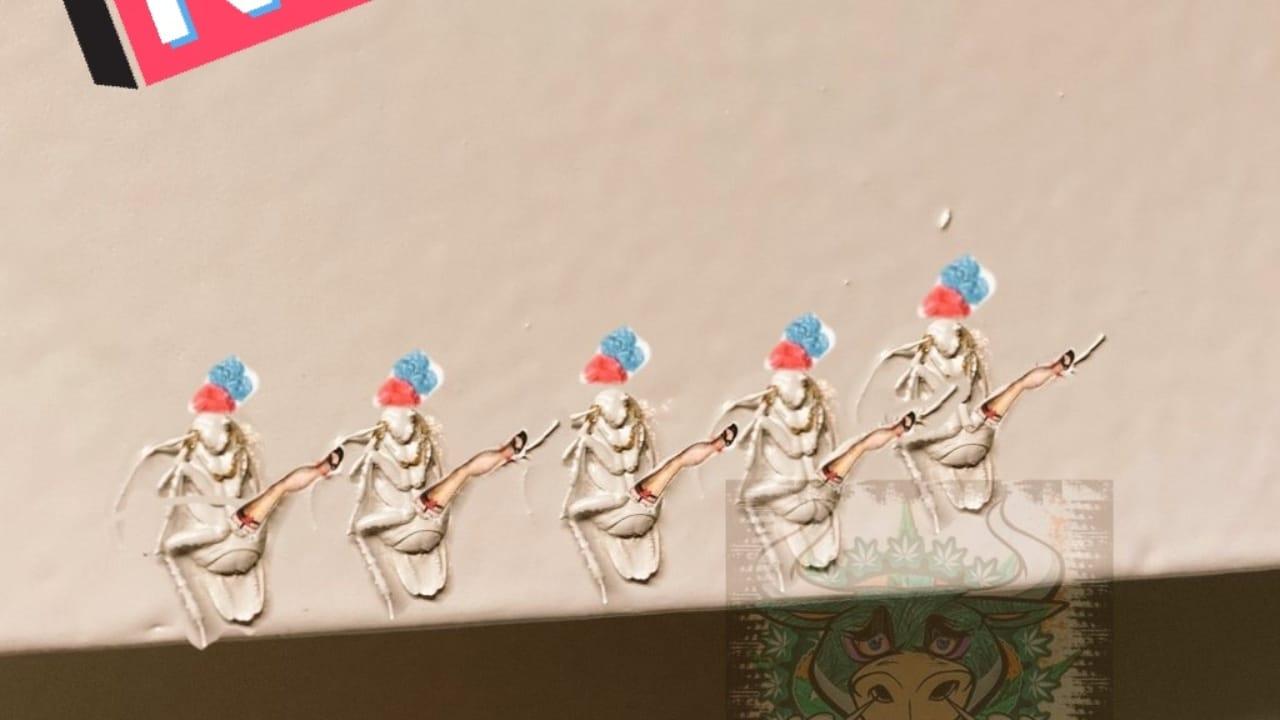 cucaracha queda inmortalizada en pared