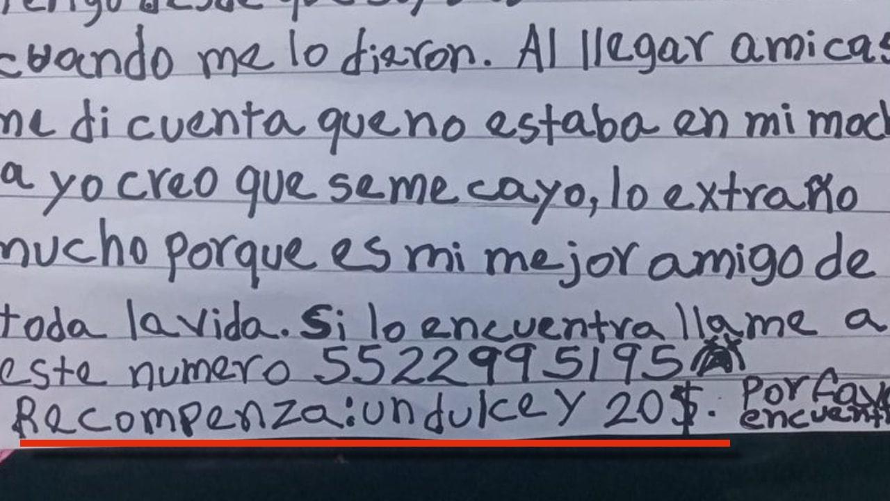 niña ofrece recompensa de 20 pesos a quien le ayude a encontrar a su peluche