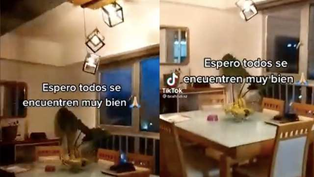 Niño Gritos Temblor 7 Septiembre Frutísima Madre Video