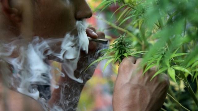 Hombre será ahorcado por traficar 1 kilogramo de cannabis en Singapur