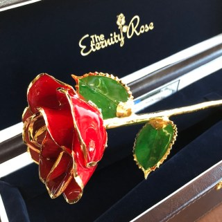 24K Gold Trimmed Eternity Rose to Last Forever