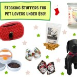 Stocking Stuffers for Pet Lovers Under $50