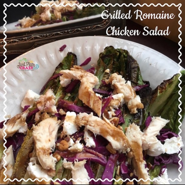 Fish Grilling Basket and Grilled Romaine Chicken Salad Recipe