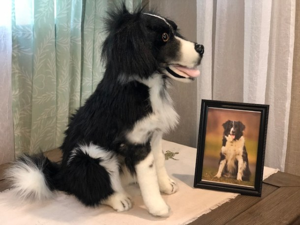 Petsies are created from a photo of your pet. Whether you have a dog, cat, horses, rat, or bird all it takes is a picture.