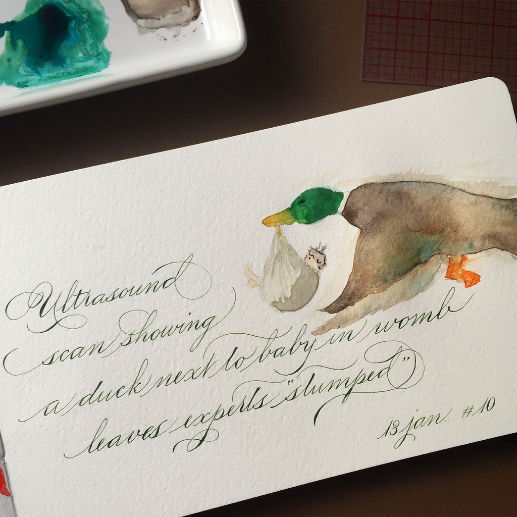Calligraphie duck baby