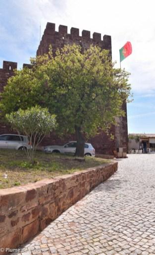 Algarve fin-41