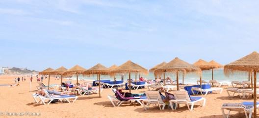 Algarve fin-76