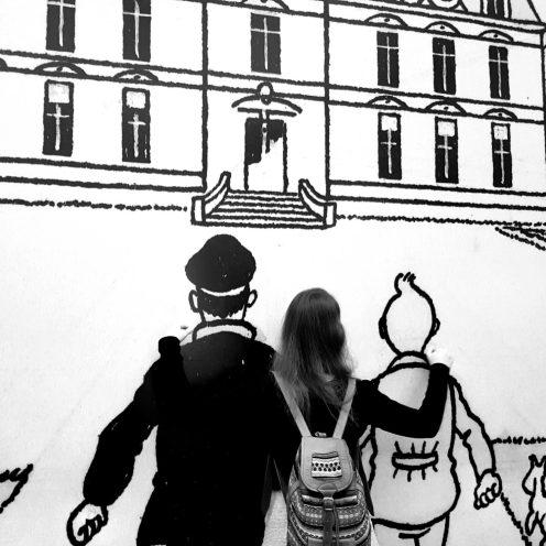 Macareuse et ses héros d'enfance. Centre belge de la bande dessinée