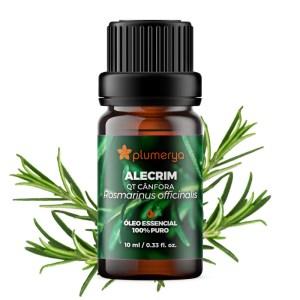 Alecrim QT Cânfora 10ml<br /><i>(Rosmarinus officinalis)</i>