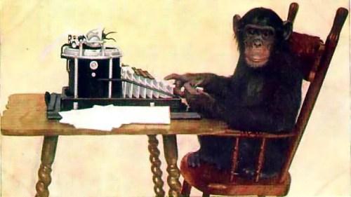 les dangers du trading singe machine à écrire